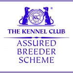 Kennel Club Assured Breeder of Large Munsterlanders